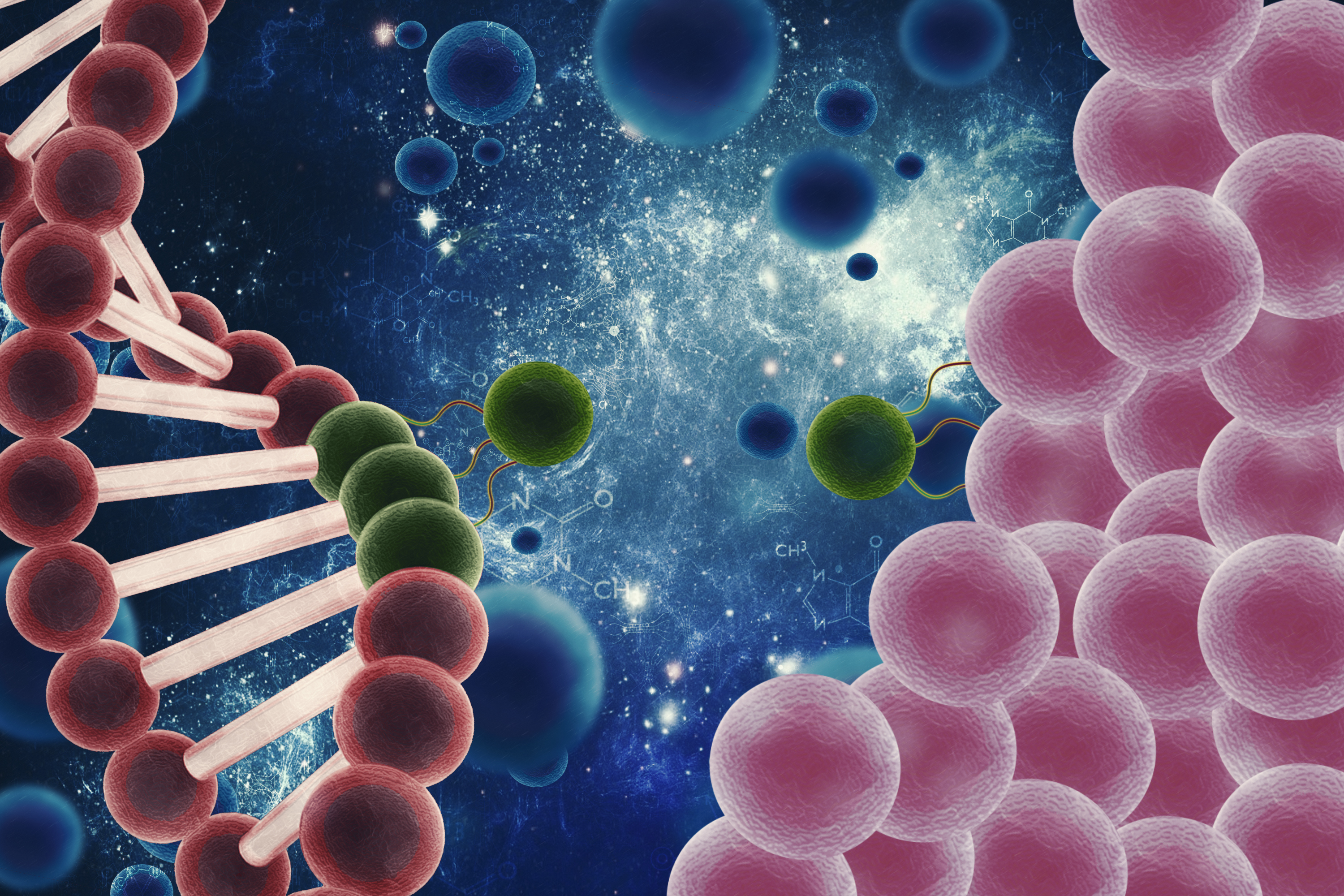 How Does Stem Cell Therapy Work National Stem Cell Centers