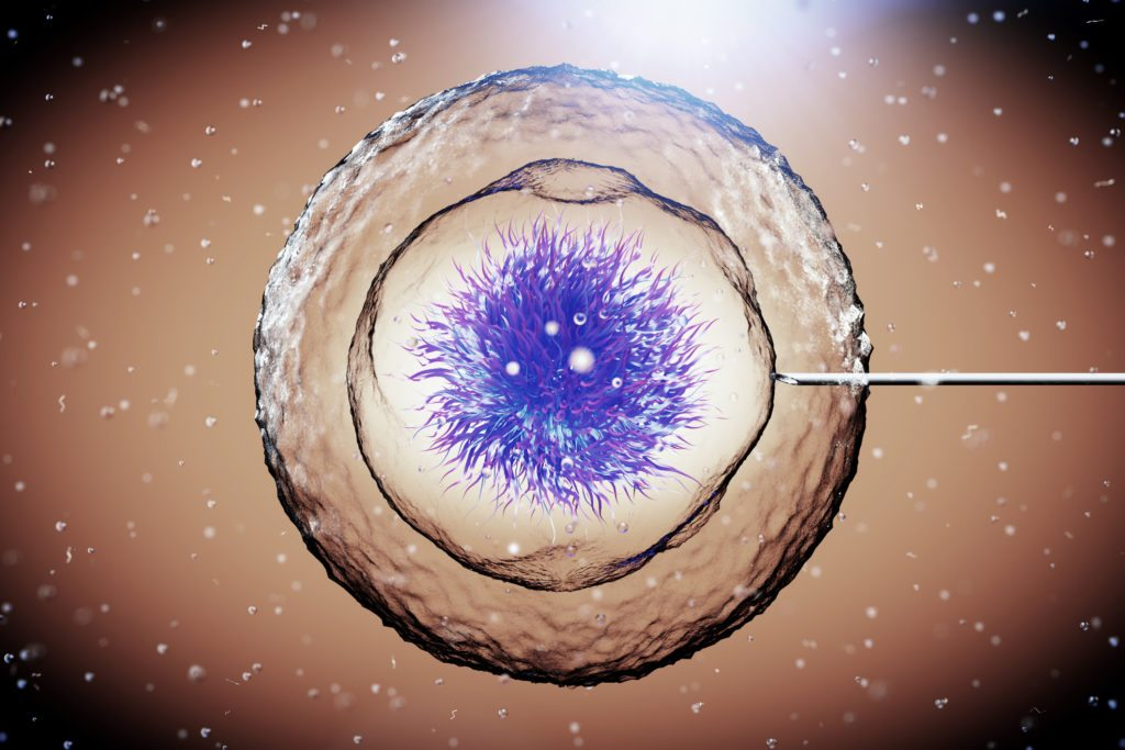 The History Of Stem Cell Treatment National Stem Cell